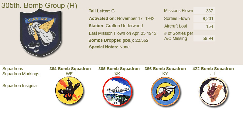 305th Bomb Group and Unit Insignias